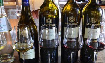 Lanzerac Wine Tasting @ Umthunzi Hotel & Conference
