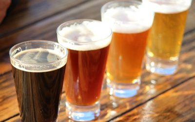 Umthunzi Hotel's Top 7 Useless Craft Beer Facts for 2018